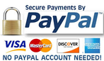 Pay Pay secure button
